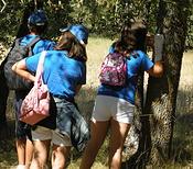 Escuelas de verano 2011